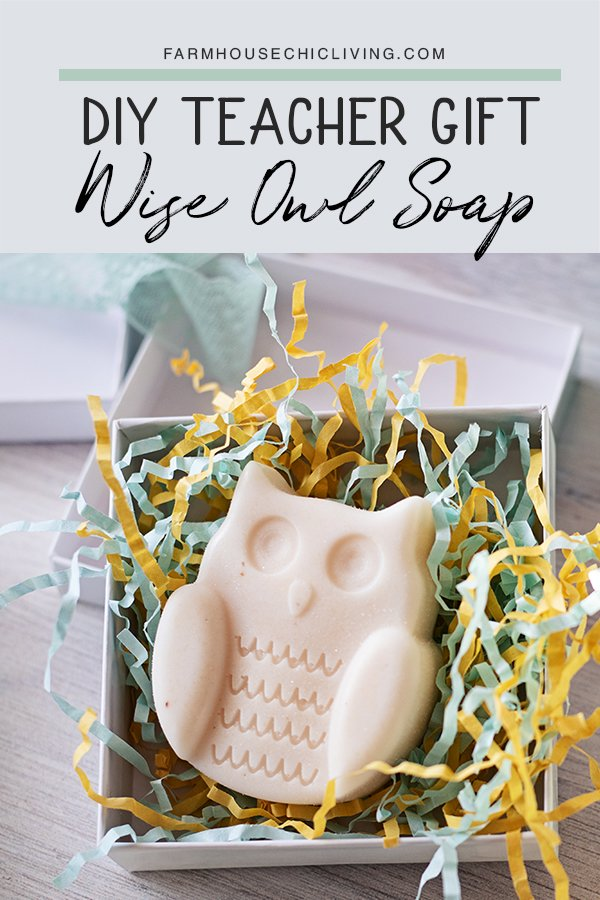 I had no idea homemade soap could be so easy and inexpensive to make! The large size, owl shape, light honey scent, and creamy lather make this owl milk and honey soap one of my favorite thoughtful, yet clever teacher gift ideas.