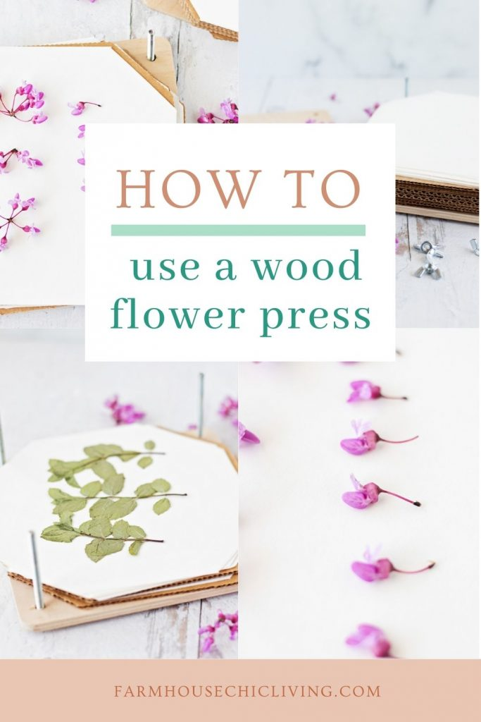 How to use a flower press with tips for collecting, preparing, and pressing flowers and leaves for best results.