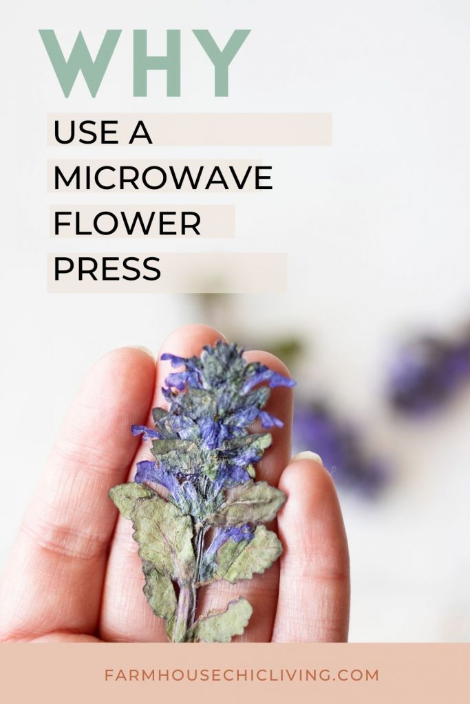 Why use a microwave flower press?  Is there a difference? Check out my before and after!